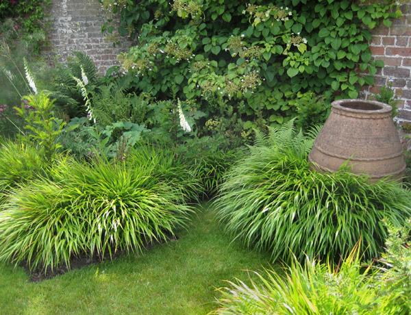 Декоративные злаки и травы в ландшафтном дизайне - правила сочетания